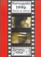 Bodas de Gloria (DVD)