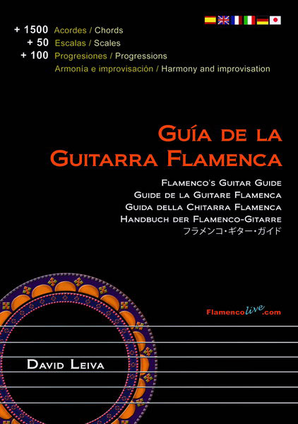 Flamenco Guitar Guide. David Leiva